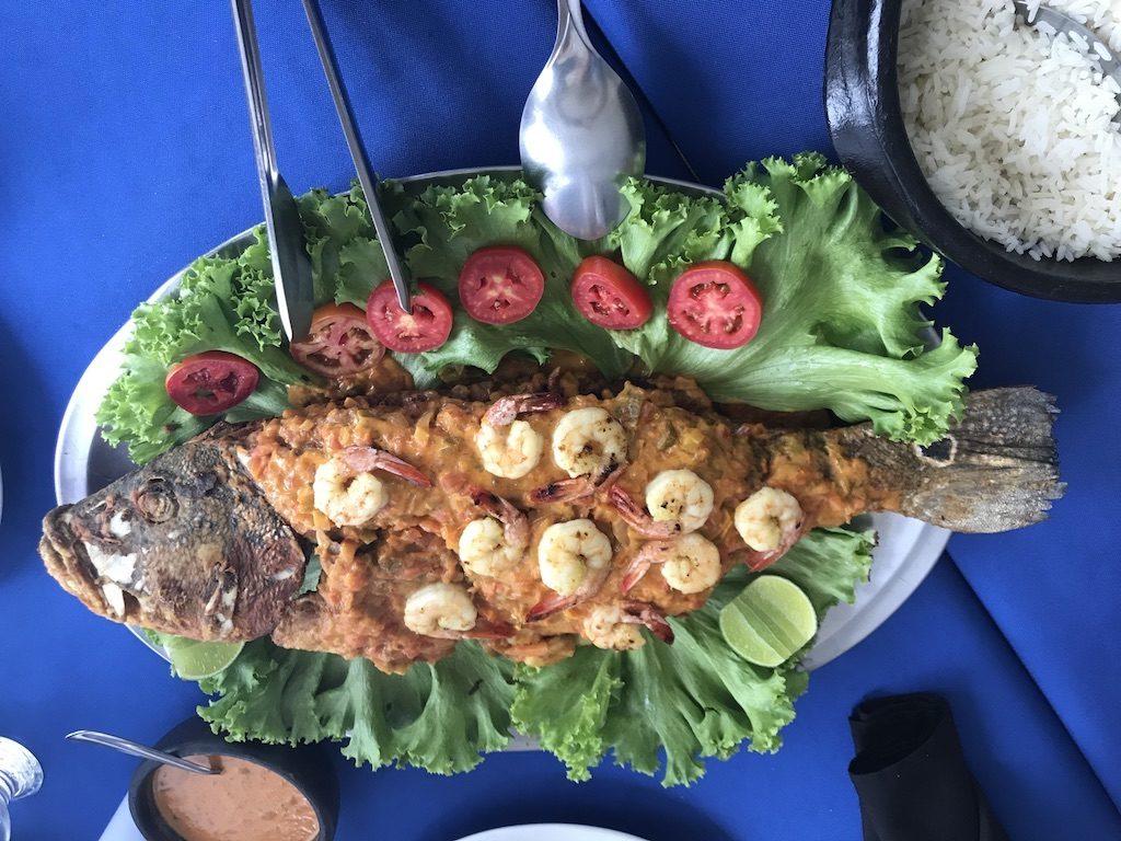 Prato típico da região servindo o  Peixe Tucunaré