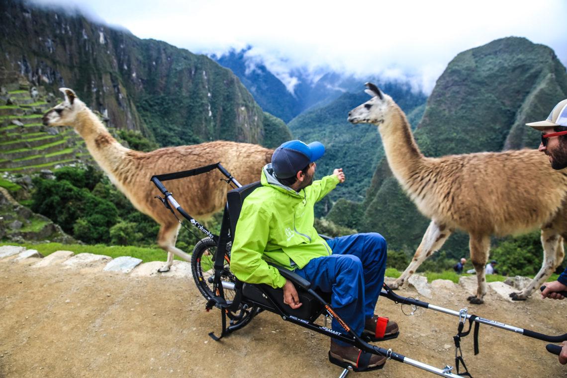 cadeirante com braço estendido em direção das lhamas com paisagem de montanhas ao fundo