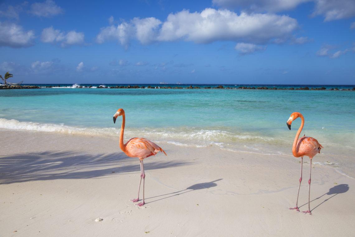 Praia em Aruba
