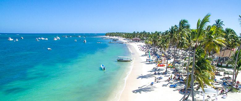 Foto panorâmica mostrando a praia com coqueiros e o mar