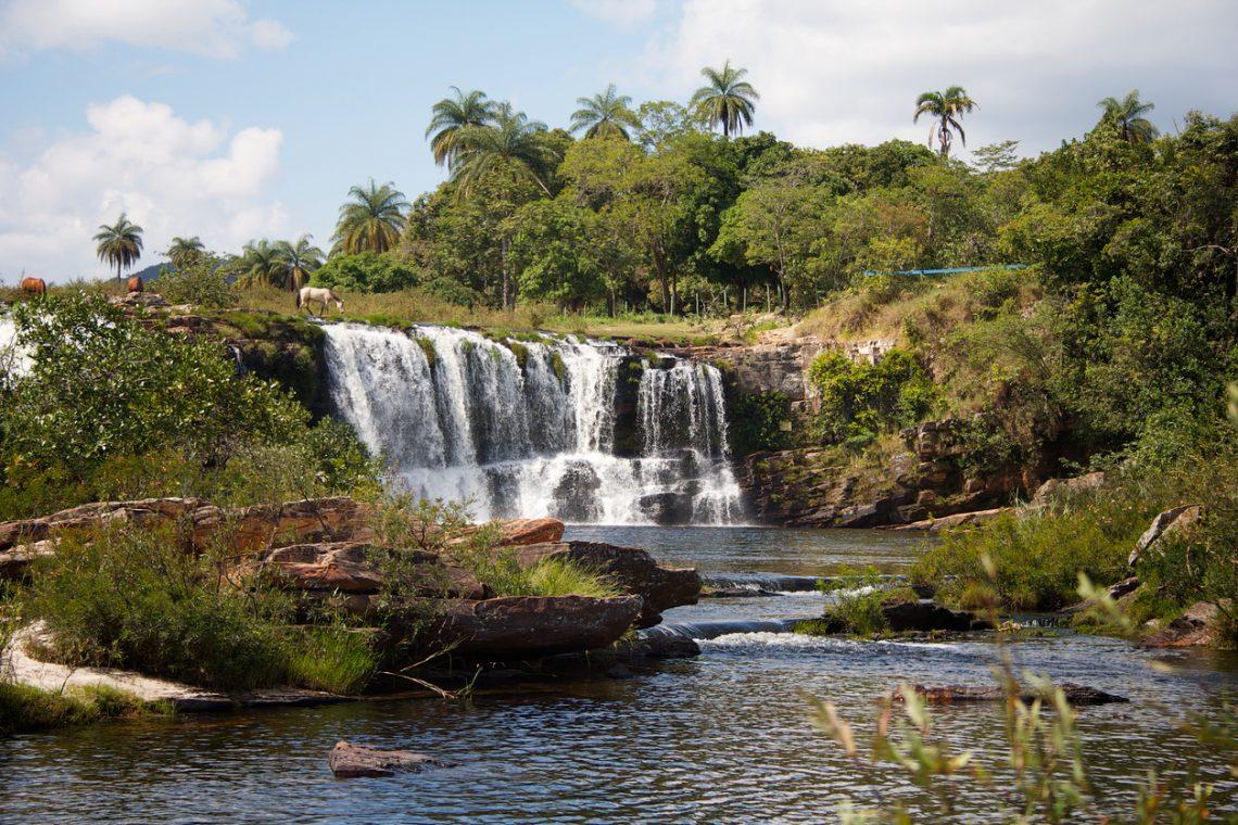 Cachoeira no meio da mata com vasta vegetação e palmeiras
