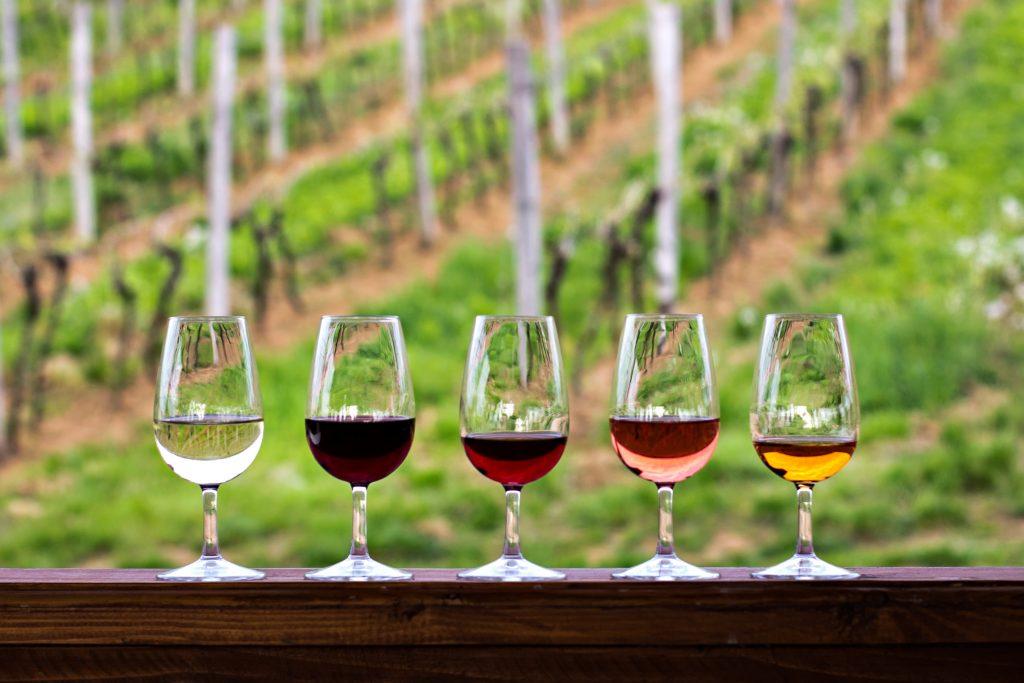 Várias taças com diversos tipos de vinho como branco, tinto, rose e suas variações como Malbec, Cabernet e outros