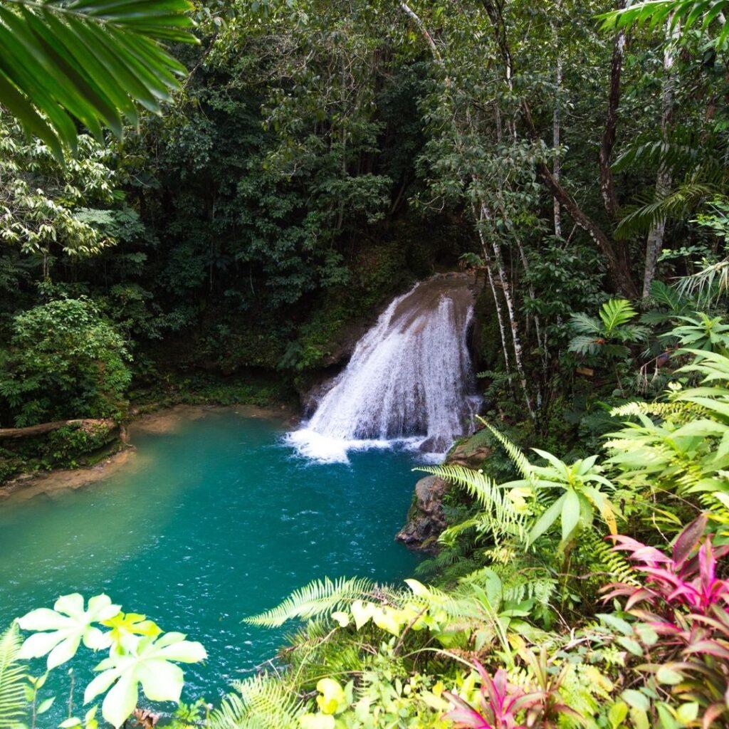 Cachoeira com linda vegetação